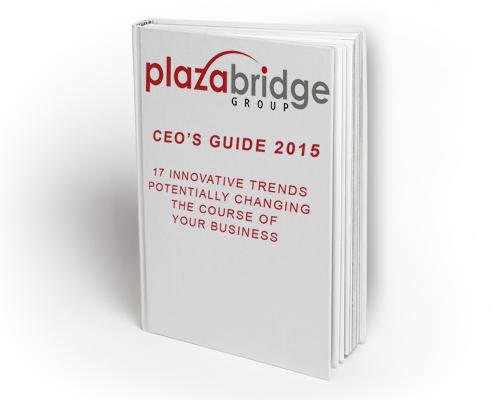 CEOs-guide-2015