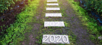 5 CEO Strategies For Continued Growth in 2020
