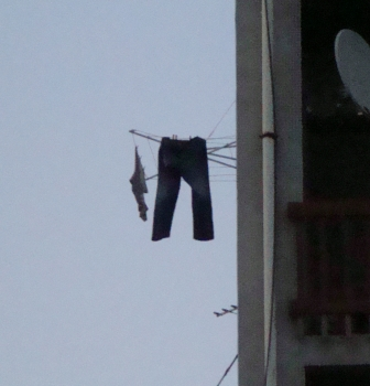 Does your Chief Innovation Officer Feel Hung Out to Dry?